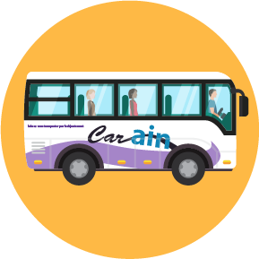Bus & Cars